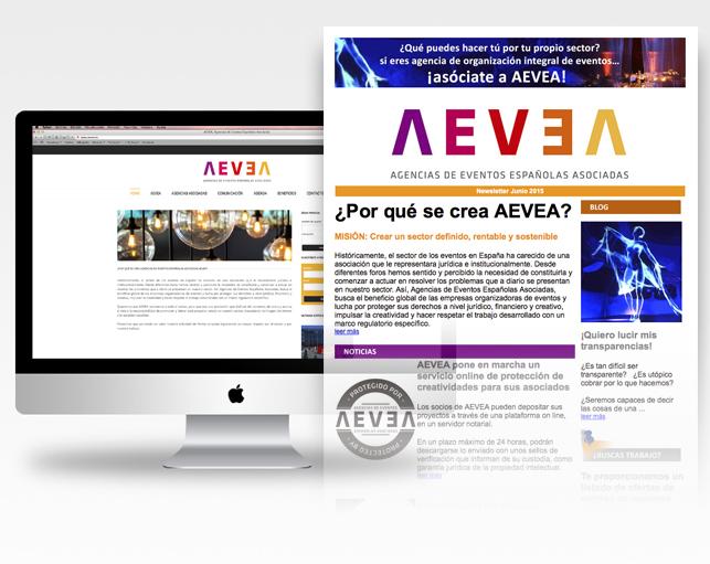 Mantenimiento página web + newsletter