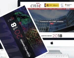Netandcorp Creativos es una agencia de servicios plenos en Publicidad, Diseño grafico y digital en Majadahonda, Las Rozas, Pozuelo, Madrid, Boadilla